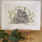 Koala 12x8 inch Print Australian Wildlife Art, mother koala cuddle in gum leaves