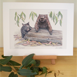 Wombats 12x8 Print Australian wildlife wall art with matt frame board
