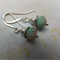 Silver Multi Coloured Earrings