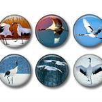 Magnet set - Cranes - 6 handmade magnets