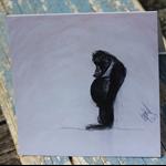 "Orangutan Blank Card ""Dolly did it"" $1 of every sale goes to Orangutan Outreach"