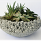 Concrete 'Lava bowl' Succulent planter, table centerpiece