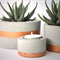 Concrete copper stripe planter trio set