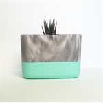 Concrete Succulent Planter - X-Large - Marble + Mint - Urban Decor