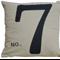 No 7  - Chic Linen Alpaca Cushion