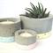 Concrete pots trio set, pastels