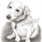 Pet Portrait in BW A5, Custom illustration of animal dog cat horse bird