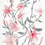 Lily botanical acrylic A4 print on archival paper