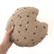 Crochet Cookie Cushion