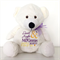 RING BEAR; Ring Pillow Alternative; Personalised Teddy;