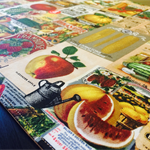 Funky,Retro Fruit & Vegetables fabric placemats.Square or rectangle design.