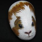 Handpainted guinea pig