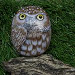 Handpainted Owl