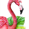 Flamingo Tropico - A4 Giclée art print on HAHNEMUHLE photo rag paper