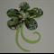 GREEN FLOWER CARDSTOCK FOR SCRAPBOOKING & CARDMAKING