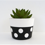 Concrete Succulent Planter - Lotsa Dots  - Urban Decor