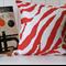 Indoor / Outdoor Orange and White Zebra